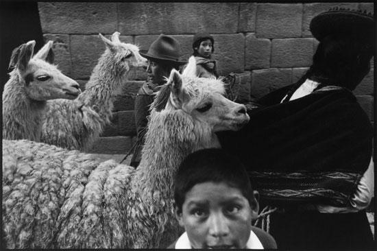 CF_CT11_Cuzco89